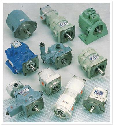 Type pump hydraulic